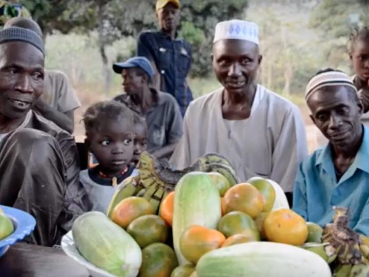 Projet développement local à Bondokhory (Dubreka, Guinée) À NOUS & île du Monde